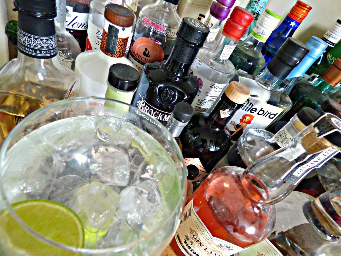 Gin Day 1